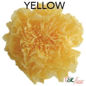 Mini Carnation / Yellow