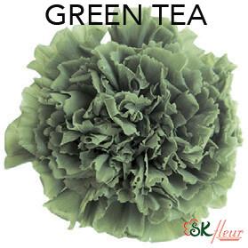 Mini Carnation / Green Tea