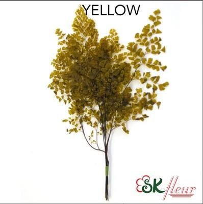 Lutti Adiantum / Yellow