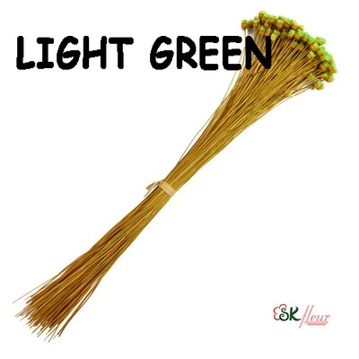 Jazilda DRIED / Light Green