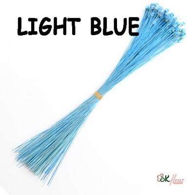 Jazilda DRIED / Light Blue