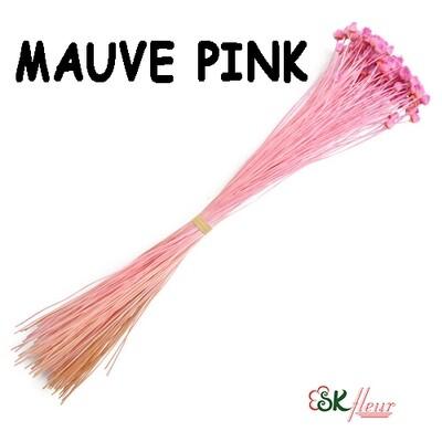 Jazilda DRIED / Mauve Pink