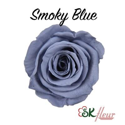 Mediana Rose / Smoky Blue
