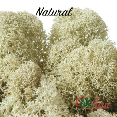 Moss/ Natural