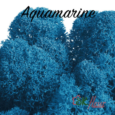 Moss - Aquamarine