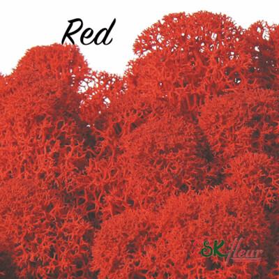 Moss/ Red