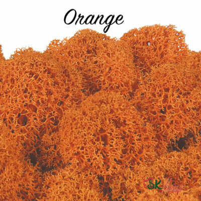 Moss/ Orange