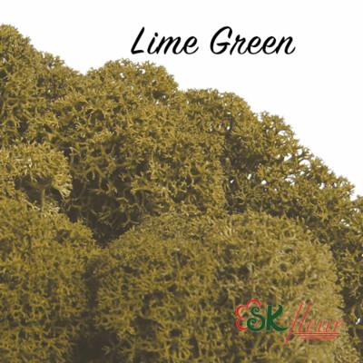 Moss/ Lime Green
