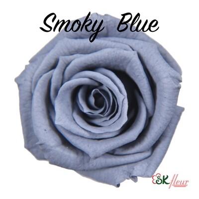 Baby Rose / Smoky Blue