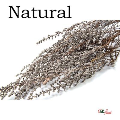 Stoebe / Natural