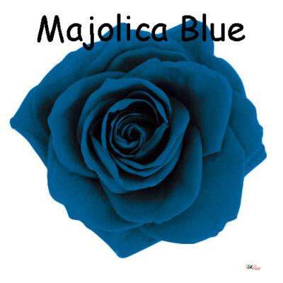 Premium Rose / Majolica Blue