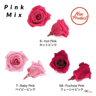 Baby Rose / Pink Mix