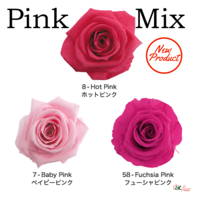 Standard Rose / Pink Mix