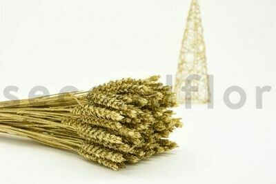 DRIED WHEAT - 1 BOUQUET - GLITTER GOLD