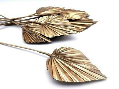 Palm Spear/Glitter Gold