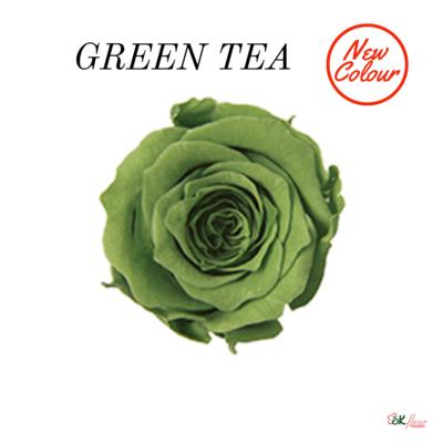 Piccola Blossom Rose / Green Tea