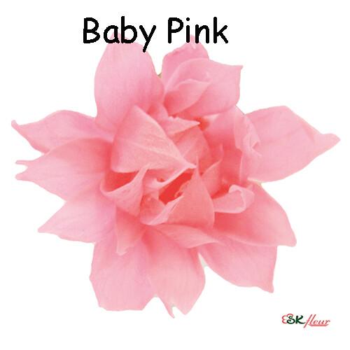 Snow Star / Baby Pink