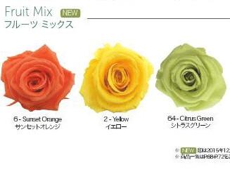 Standard Rose / Fruit Mix