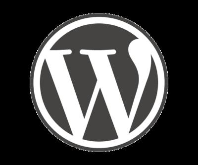 Bronze – Custom WordPress Website