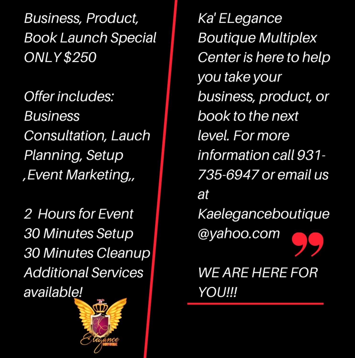 Business, Product, Book Launch Special