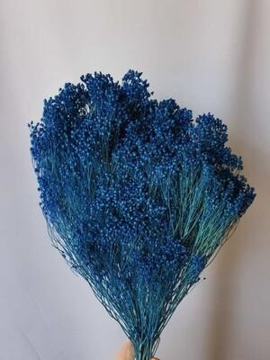Брум синий сухой