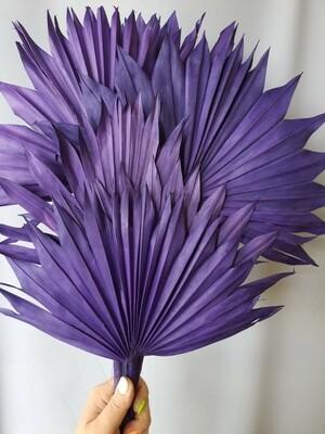 Листья пальмы сухие веером фиолетовые 6 шт