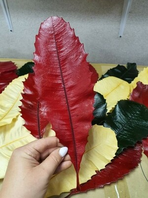 Листья стабилизированные красные