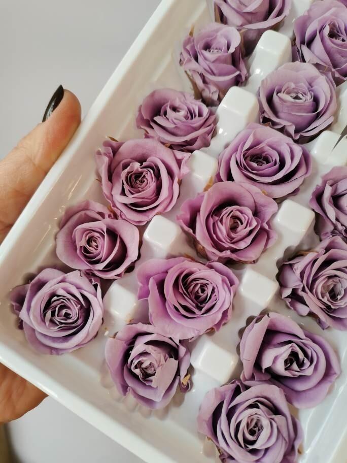 Роза фиолетовая 2,5-3см стабилизированная