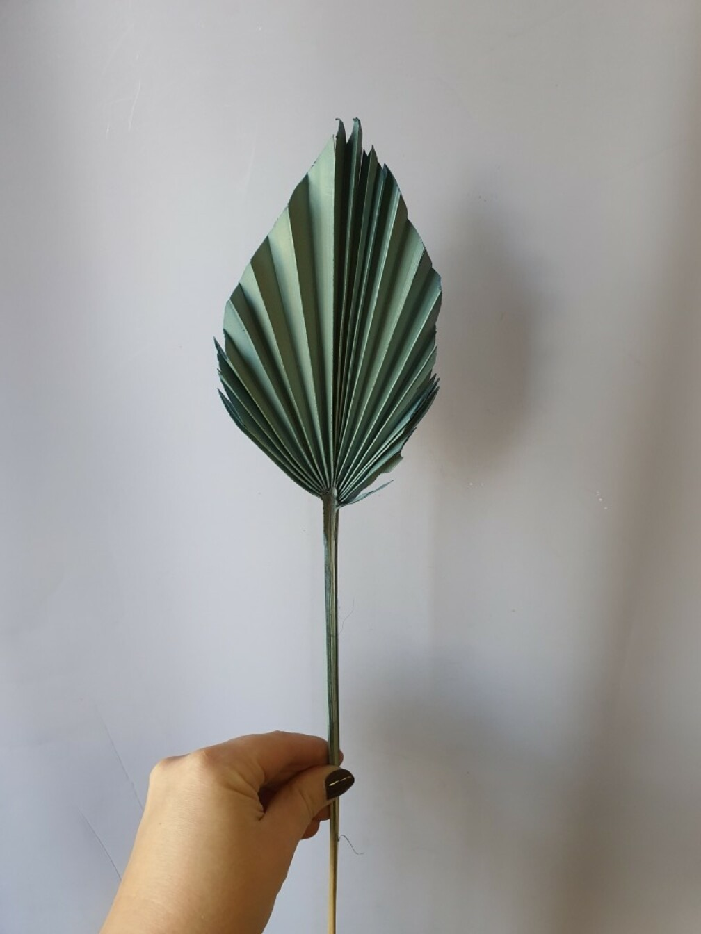 Лист пальмы синий стальной 1шт