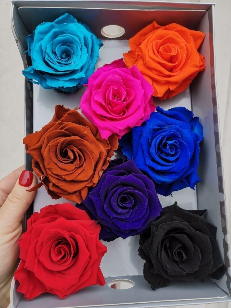 Роза микс стабилизированная 6,5-7см коробка