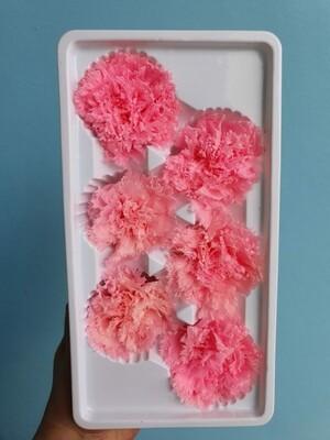 Гвоздика розовая 5см стабилизированная