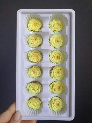 Роза желтая 3см стабилизированная Китай фабричный