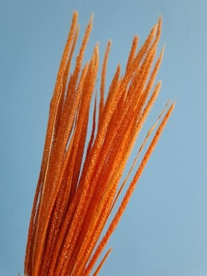 Flum orange dried