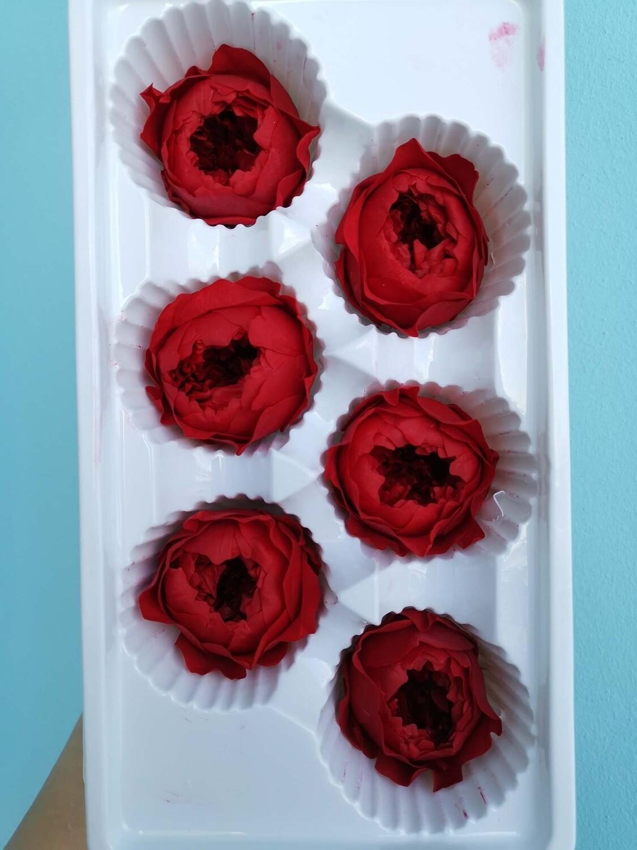 Роза красная 4-5см пионовидная стабилизированная