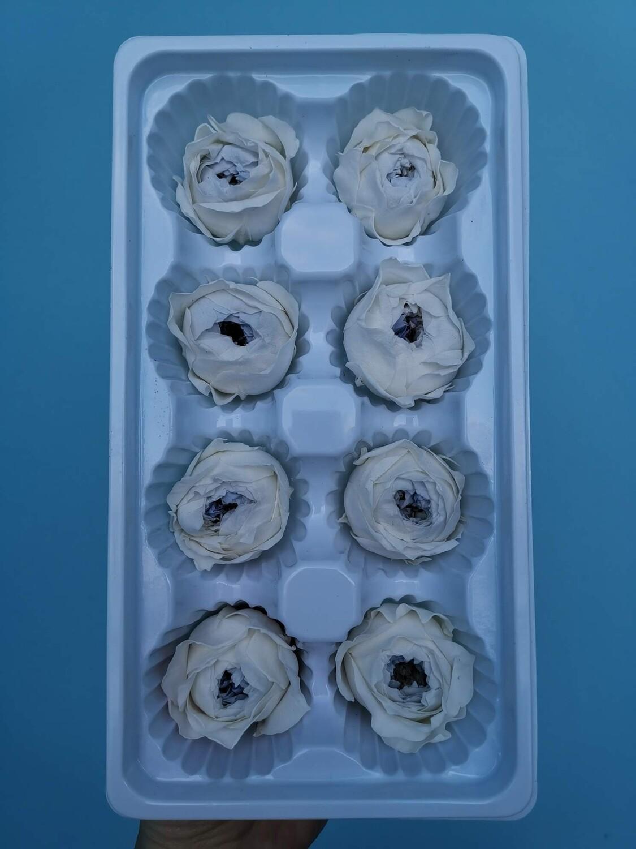 Роза белая с голубой серединой 3-4см пионовидная стабилизированная