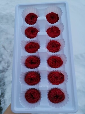 Роза красная 3 см пионовидная кудрявая стабилизированная