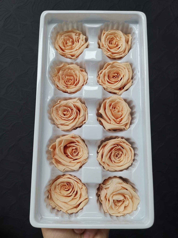 Роза персиковая 3-4см стабилизированная