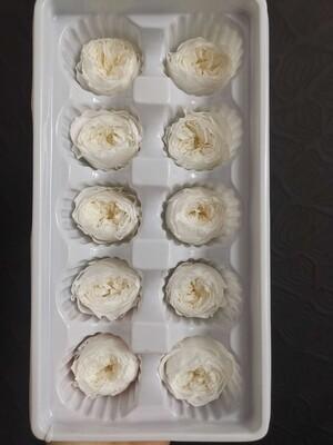 Роза белая 3-3,5см пионовидная стабилизированная