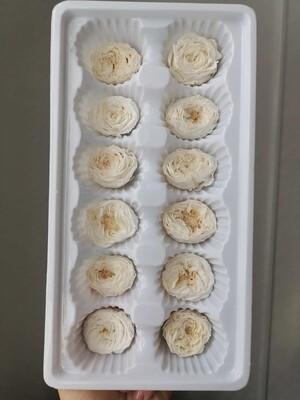 Роза белая молочная 2,5-3см пионовидная стабилизированная