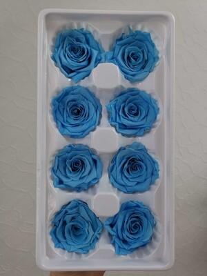 Роза голубая 4см стабилизированная