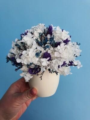 Композиция сине-белая из стабилизированных цветов и сухоцветов в керамическом кашпо