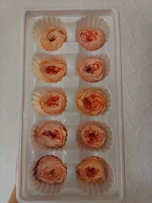 Роза персиковая и розово персиковая 3-3,5см микс коробка 10шт