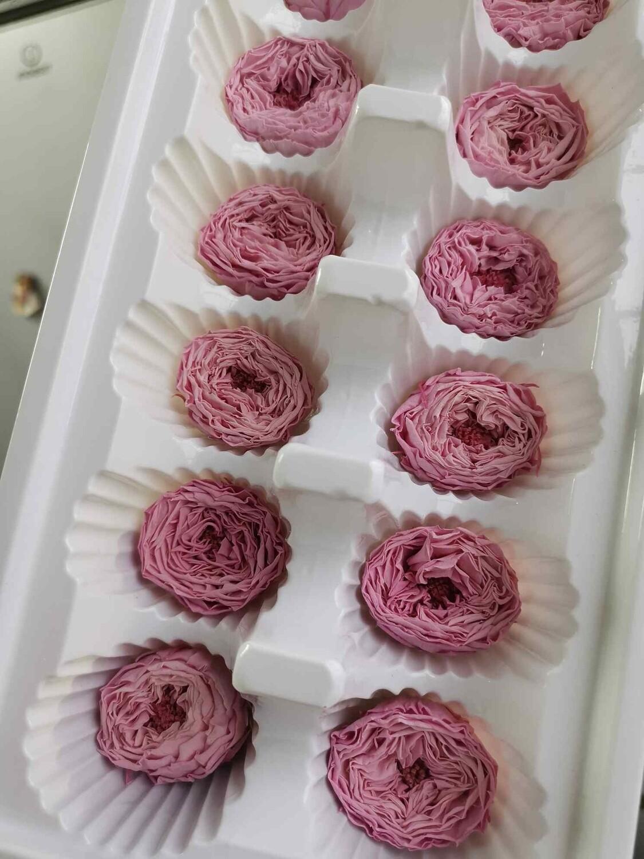 Роза розово-сиреневая 2,5-3см пионовидная стабилизированная