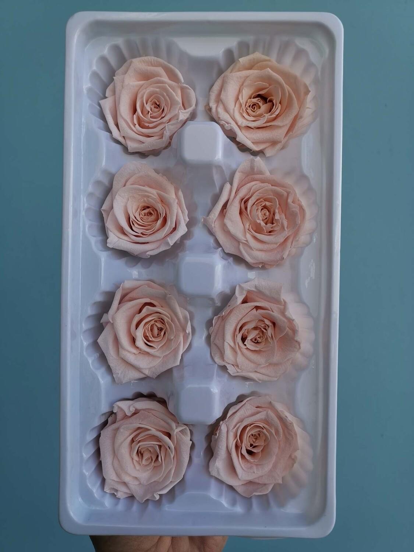 Роза розовая 4см стабилизированная