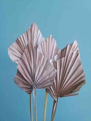 Листья пальмы копья розовое золото 5шт