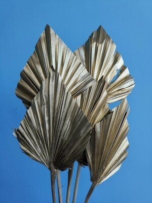 Листья пальмы копья золотые 5шт