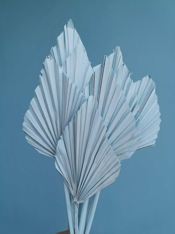Листья пальмы голубые копья 10шт