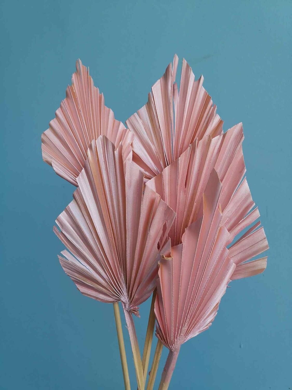 Листья пальмы копья розовый перламутр 5 шт