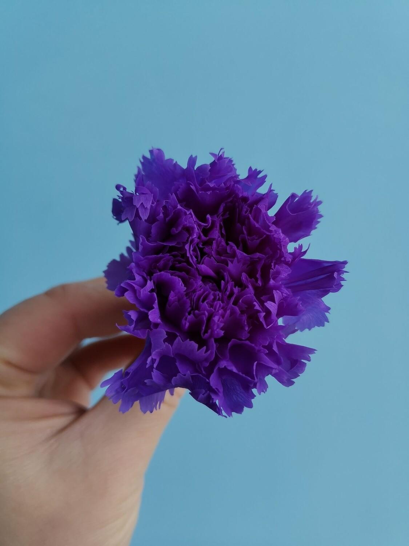 Гвоздика фиолетовая 3-3,5см стабилизированная