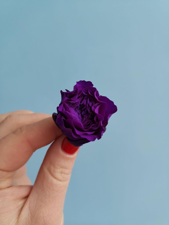 Роза фиолетовая 2см стабилизированная